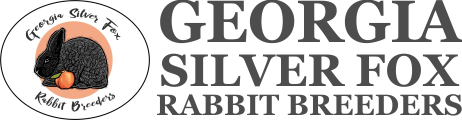 Georgia Silver Fox Rabbit Breeders